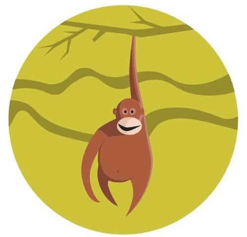 Year of the Monkey 2021 Horoscope