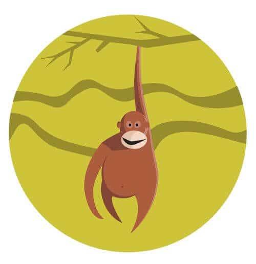 Year of the Monkey 2020 Horoscope