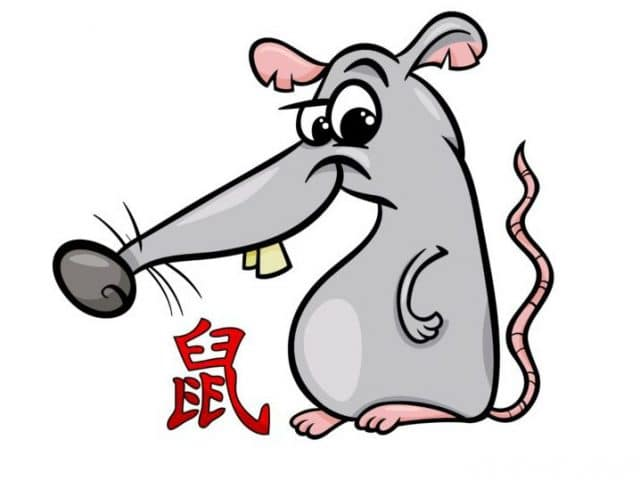 Year of the Rat – 2022 Horoscope & Luck Predictions