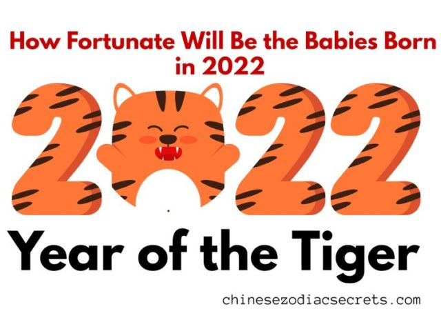How Fortunate Will Be the Babies Born in 2022 – Year of the Tiger